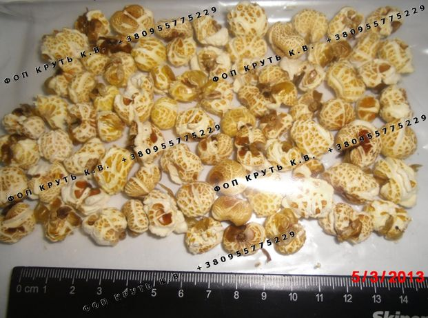 Воздушная кукуруза, взорванная, дутая Puffed Corn