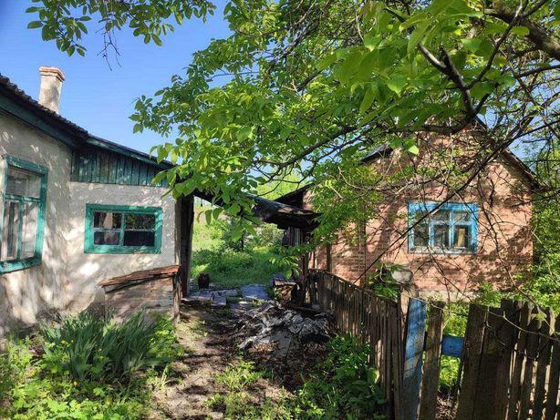 Продам дом 4 комнаты г.Железное (Артемово)