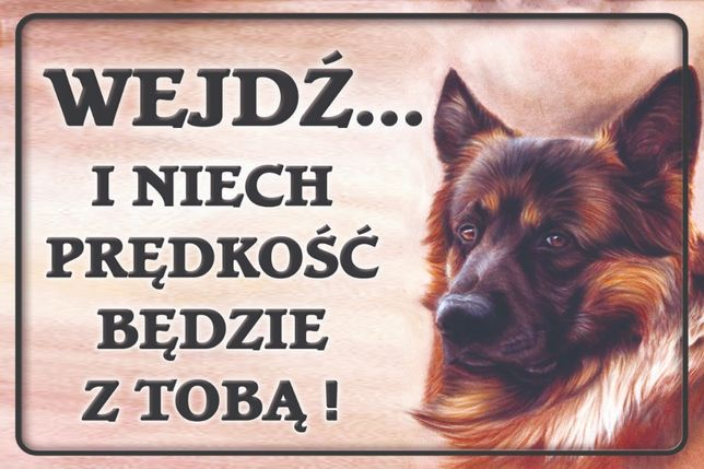 Tabliczka dla psa-Uwaga Pies