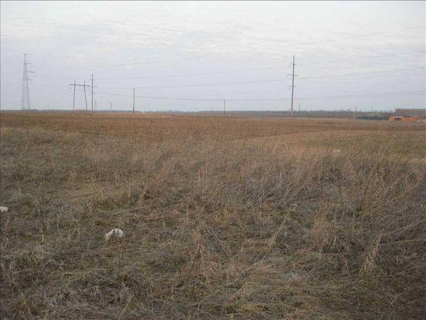 Земельный участок под застройку в Россошенцах (Полтава)