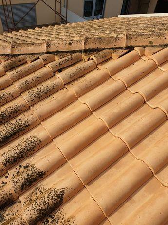 Lavagem de telhados e outros