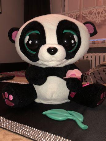 Panda Jojo