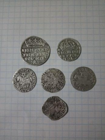 Монеты Польши гроши и полугроши