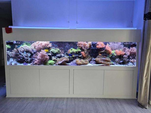 Akwarium morskie 1700 litrów. PEŁEN ZESTAW z szafką