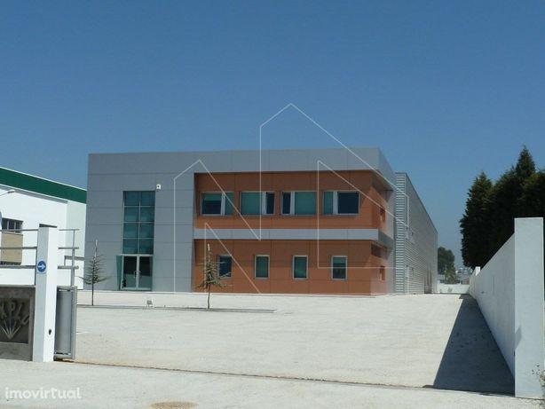 Armazém industrial em Albergaria-a-Velha