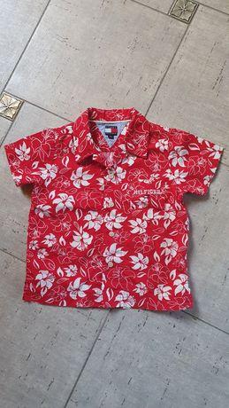 Tommy Hilfiger koszulka dla chłopca wzory oryginalna 80 92