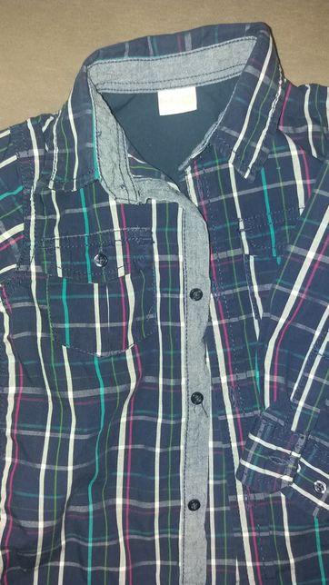 Koszula rozum 86