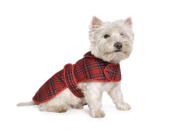 Promocja ! Płaszczyk dla psa oryginalna Szkocka krata rozmiar L