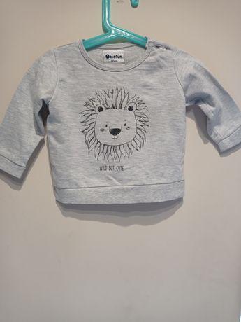 Bluzy chłopięce rozmiar 68-74