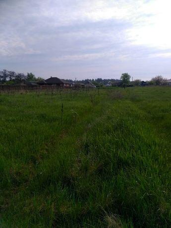 Фасад 25сот под строительство в с. Жукин, 40 км Киев, 10 мин до р. Д