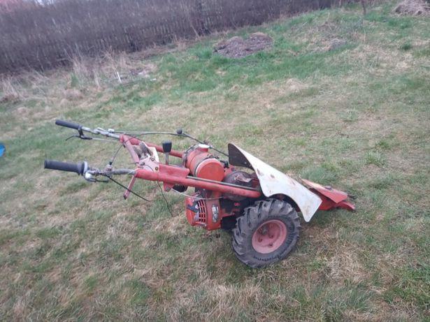 dzik traktorek MF70 z kosiarką listwową