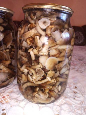 Опеньки 2020 з Карпат 1 літр 70грн гриби 180 сироїжки 90грн