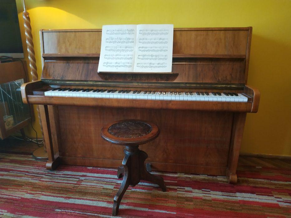 Pianino Calisia Sopot - image 1