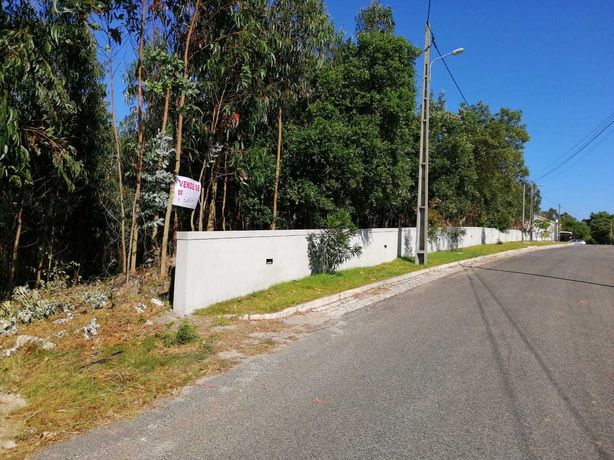 OPORTUNIDADE:Terreno com 6 HA no Casal das Freiras de Caldas da Rainha