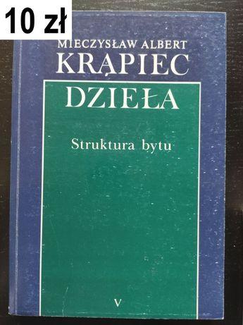 Krąpiec, M. A., Struktura bytu