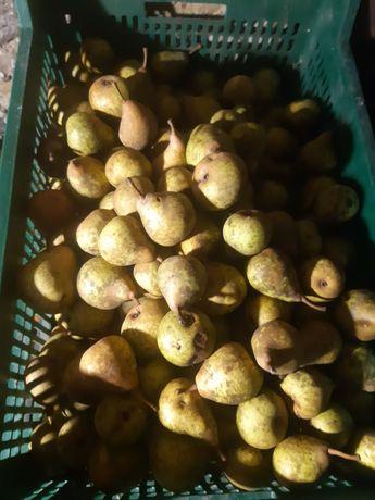 Продам яблука і груші, домашні, не кроплені, різні сорти