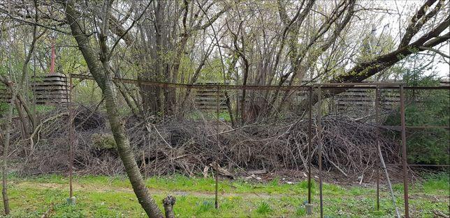 Gałęzie suche z drzew owocowych IDEALNE  do wędzarni lub na opał