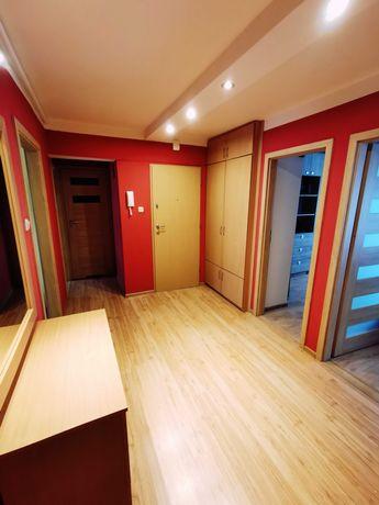 Przecena Do wynajęcia 4 pokojowe mieszkanie 74m2