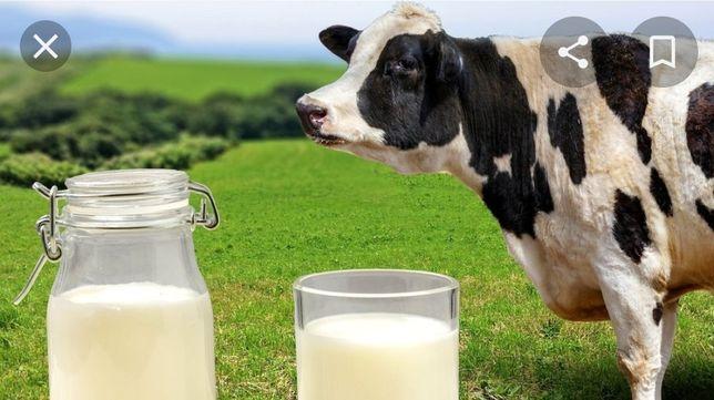Домашние молочко,сливки,творог..