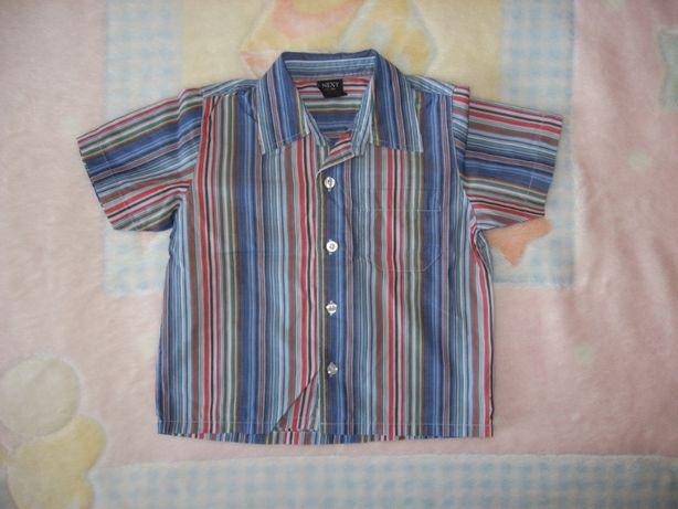 Koszula chłopięca krótki rękaw NEXT r.86 OKAZJA
