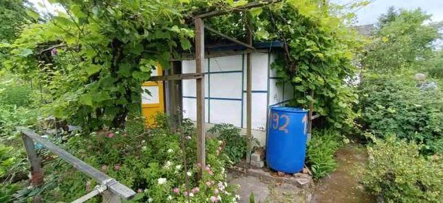 Działka ROD, ogródek działkowy rekreacyjny, ok.500 m2, ul. KOŚCIUSZKI