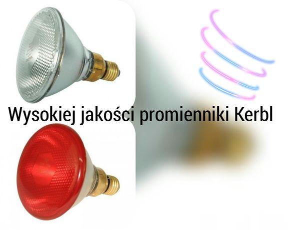 Promiennik Kerbl 175W biały i czerwony