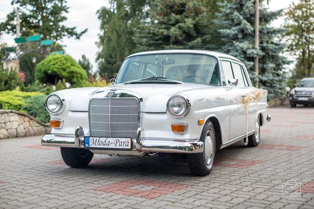 Auto do ślubu / samochód do ślubu Mercedes W110 biały skrzydlak retro
