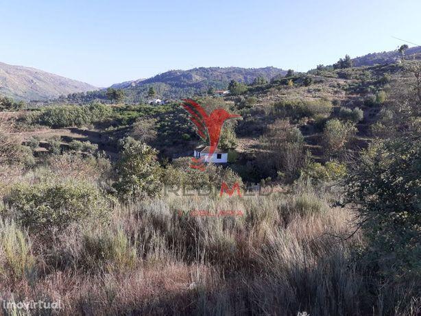 Quinta com mais 4 hectares na Serra da Aldeia Nova