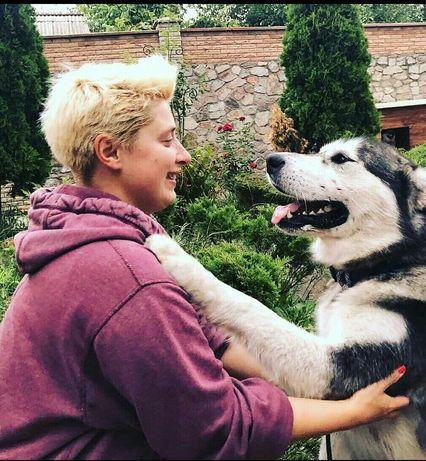 Зоопсихолог. Кинолог. Дрессировка собак. Киев.
