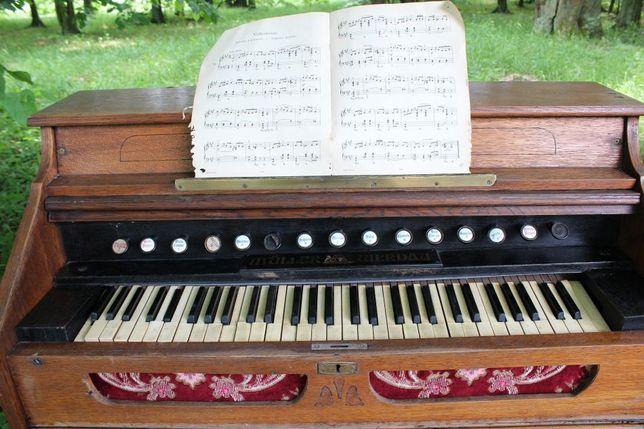 Fisharmonia Organy Muller Werdau !!! Mega okazja