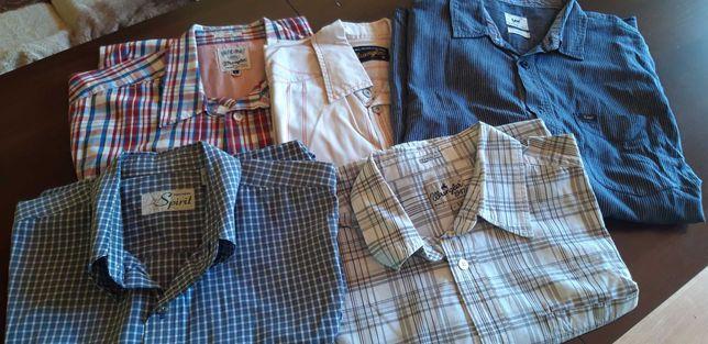 Koszule męskie L M