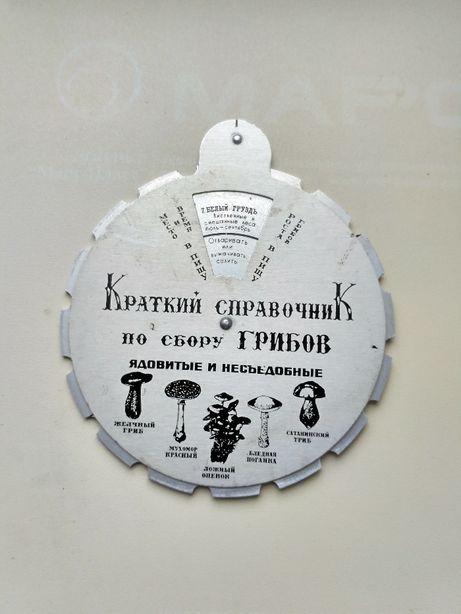 Краткий справочник по сбору грибов