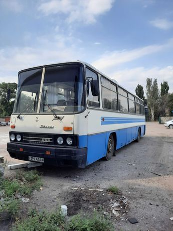Продам Ikarus 256