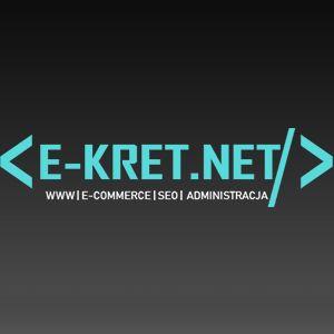 Strony i sklepy internetowe/ Strony zarabiające/Dropshipping