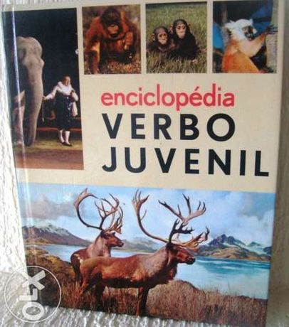 Enciclopédia Verbo Juvenil 10 Fascículos