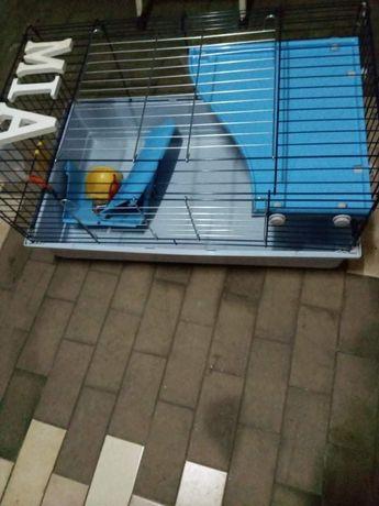 gaiola grande para coelho