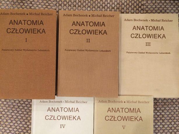 Anatomia Człowieka Adam Bochenek tomy I-V