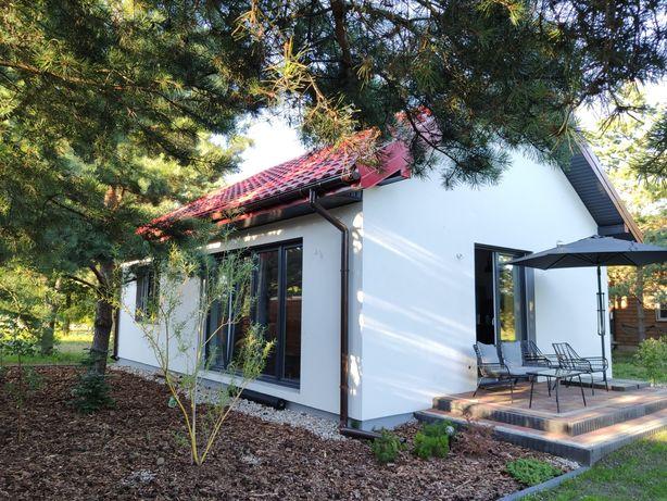Domek dom do wynajęcia nad jeziorem Kalwa Pasym Mazury wolny od zaraz