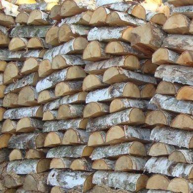 Drewno kominkowe brzoza