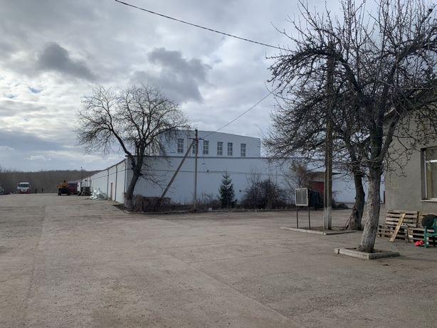продаж молокозавод база склад м. Березівка, Промислова 3