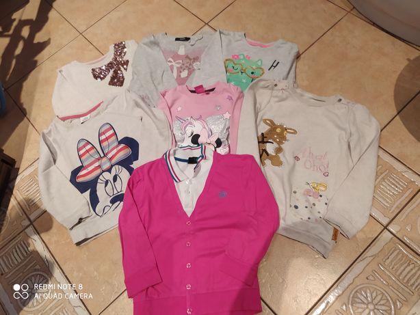 Bluzy dla dziewczynki 3-4 lata 104