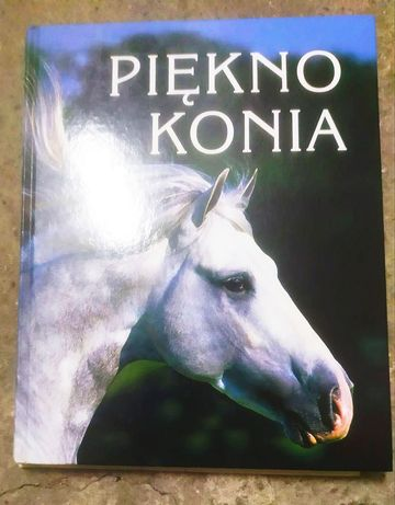 Piękno konia Barbara Szymczak