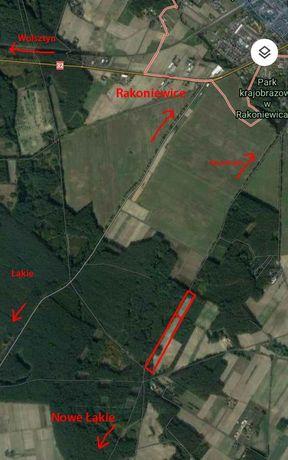 Pole Ziemia Dzialka Dzialki Rakoniewice 3,12 ha