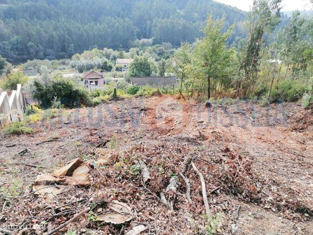 Terreno para construção em Carvoeiro