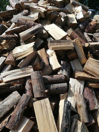 Drewno opałowe drzewo sosna