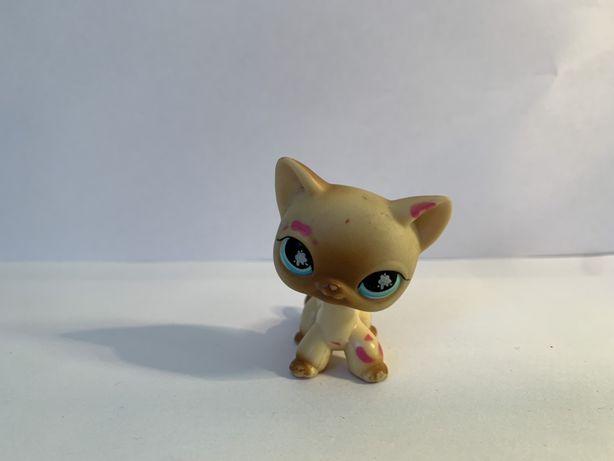 LPS Littlest Pet Shop - figurka kotek shorthair