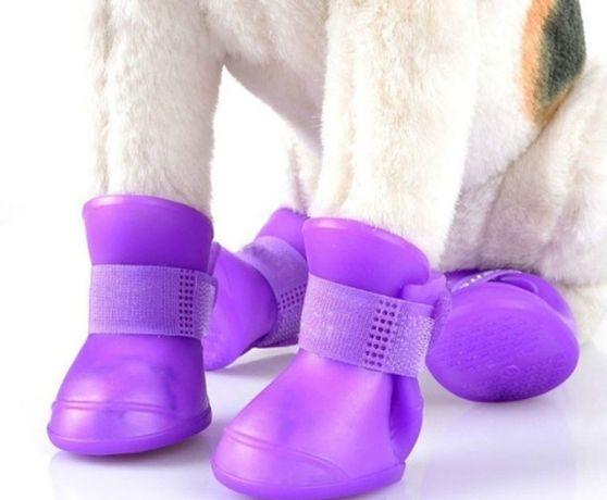 Sapatos impermeáveis