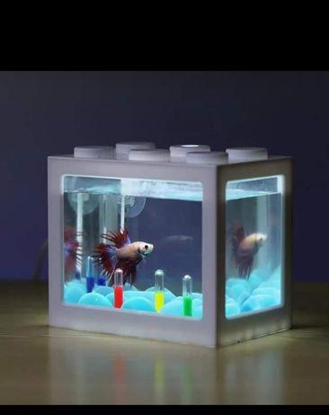 Mini aquário