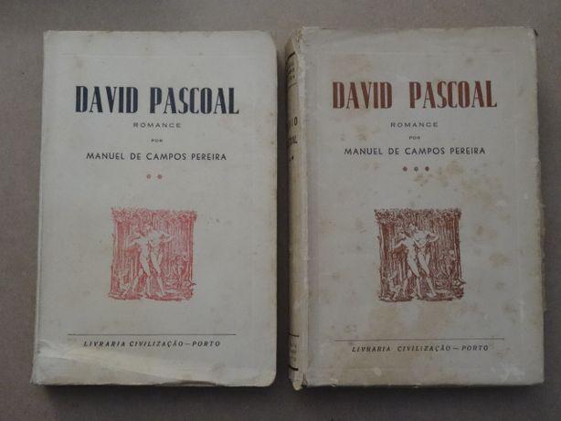 David Pascoal de Manuel de Campos Ferreira - 2 Volumes