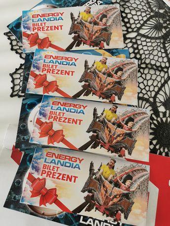 Bilety do Energylandii 2+2